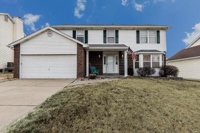 Single Family Home For Sale: 3724 Somerville Drive