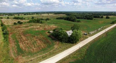 Adair County, Audrain County, Clark County, Knox County, Lewis County, Macon County, Marion County, Monroe County, Pike County, Ralls County, Scott County, Shelby County Farm For Sale: 34062 Lion Avenue
