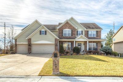 O'Fallon Single Family Home For Sale: 1002 Brook Mont Drive