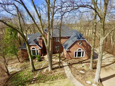 Edwardsville Single Family Home For Sale: 27 Country Club View