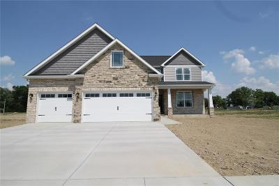 Mascoutah New Construction For Sale: 208 Mason
