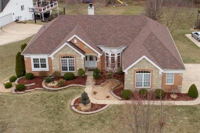 Lake St Louis Single Family Home For Sale: 32 Grasmere Court