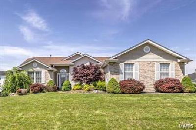 Dardenne Prairie Single Family Home For Sale: 1009 Dardenne Woods