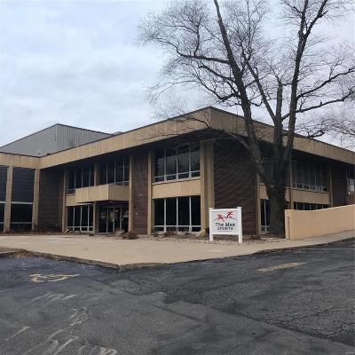 Alton Commercial For Sale: 2300 Henry