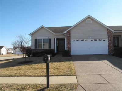 Wentzville Single Family Home For Sale: 160 Silo View Drive