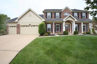 Wildwood Single Family Home For Sale: 9 Blackwolf Run Court