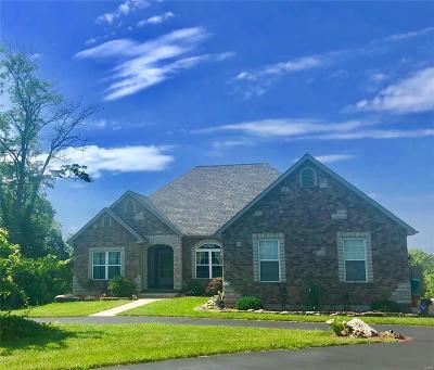 Hillsboro Single Family Home For Sale: 200 Kally Drive