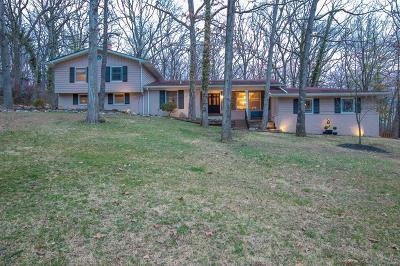 Kirkwood Single Family Home For Sale: 1448 Wilton Lane