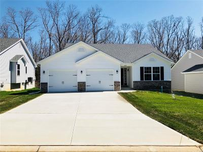 Wright City Single Family Home For Sale: 499 Indian Lake Drive