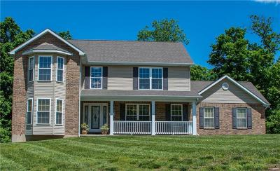 Byrnes Mill Single Family Home For Sale: 3908 Olde Mill Drive
