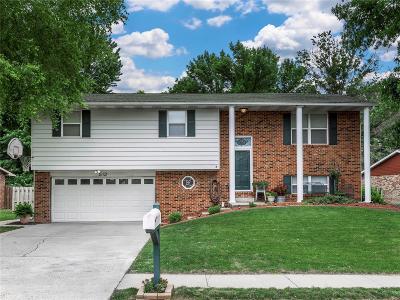 Belleville Single Family Home For Sale: 512 Windrift Drive