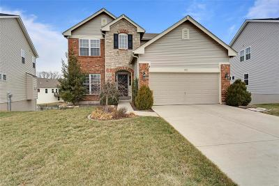 Wentzville Single Family Home For Sale: 603 Derby Way Drive