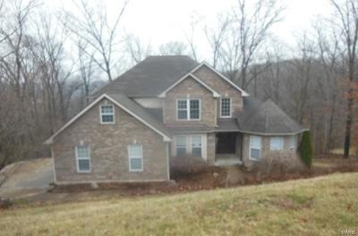 Pacific MO Single Family Home For Sale: $354,250