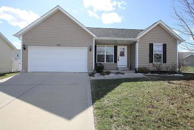 Mascoutah Single Family Home For Sale: 9906 Citation Court