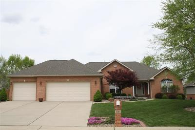 Swansea Single Family Home For Sale: 1509 William Lane