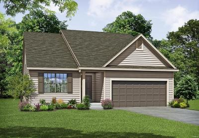 Wentzville Single Family Home For Sale: 1 Tbb-Davinci-4bd@pinewoods Est