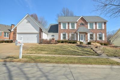 Chesterfield Single Family Home For Sale: 15775 Summer Ridge Drive