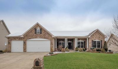 St Charles Single Family Home For Sale: 824 Innisfree Drive