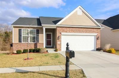 Wentzville Single Family Home For Sale: 519 Wilmer Hollow Lane