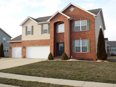 Mascoutah Single Family Home For Sale: 9711 Weatherby Street