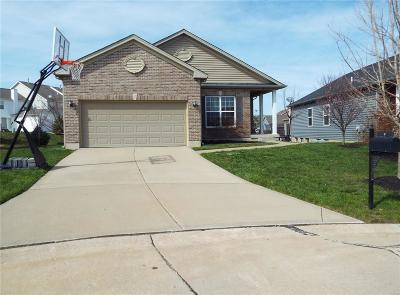 Lake St Louis Single Family Home For Sale: 17 Country Trail Court