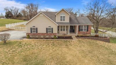 Single Family Home For Sale: 3207 Cole Meadows Court