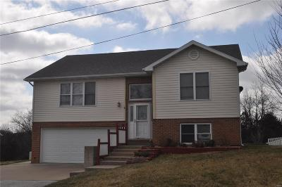 Hannibal MO Single Family Home For Sale: $179,900