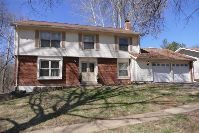 Manchester Single Family Home For Sale: 805 La Feil Drive