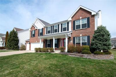 O'Fallon Single Family Home For Sale: 1203 Red Orchard Court