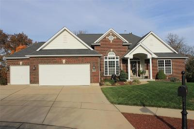 Arnold Single Family Home For Sale: 1626 Twin Oaks Drive