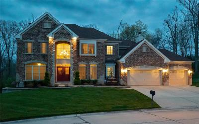 St Charles Single Family Home For Sale: 609 Bemis Heights Drive