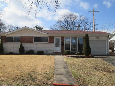 Single Family Home For Sale: 1163 Burch Lane
