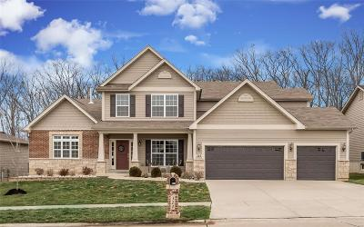Wentzville Single Family Home Contingent No Kickout: 322 Parkview Manor Lane
