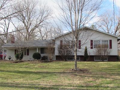 Glen Carbon Single Family Home For Sale: 248 Glen Carbon Road