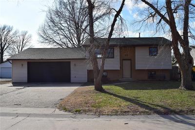 Granite City Single Family Home For Sale: 15 Snowbird Lane