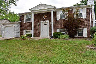 Single Family Home For Sale: 1373 Twin Trails