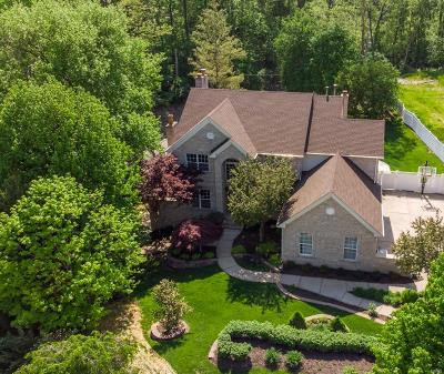 Chesterfield Single Family Home For Sale: 507 Oak Creek Meadows Court