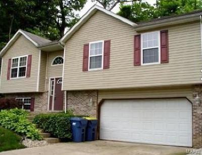 Glen Carbon Single Family Home For Sale: 5 Raintree Court