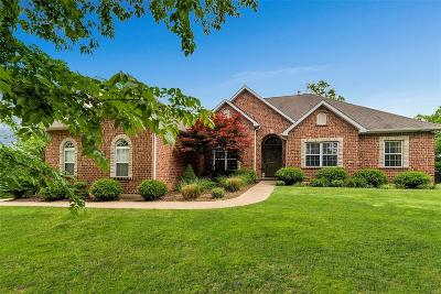 High Ridge Single Family Home For Sale: 11 Camelot Court