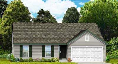 St Charles Single Family Home For Sale: Rochester - Bristol Ridge