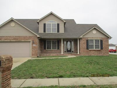 Mascoutah IL Single Family Home For Sale: $289,900