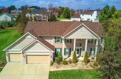 O'Fallon Single Family Home For Sale: 779 White Horse Lane