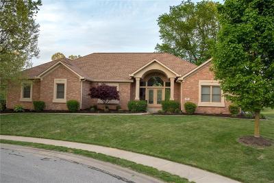 Caseyville Single Family Home For Sale: 1119 Far Oaks