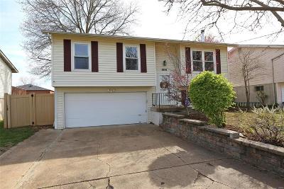 Single Family Home For Sale: 308 Stillbrook Estates Drive