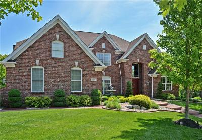 Chesterfield Single Family Home For Sale: 16384 Wynncrest Falls Way