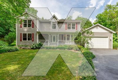 St Louis MO Single Family Home For Sale: $469,900