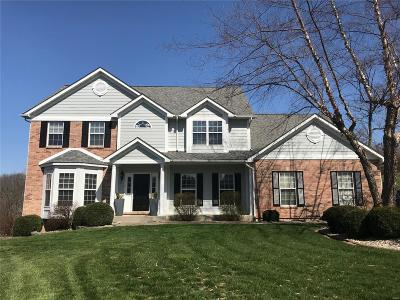 Fairview Heights Single Family Home For Sale: 7465 Timberwolf Trail