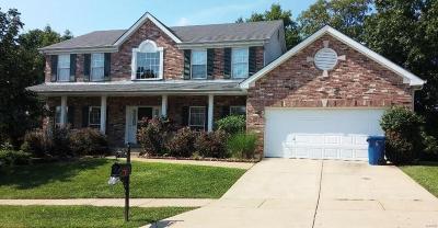 Ballwin Single Family Home For Sale: 625 Castle Ridge