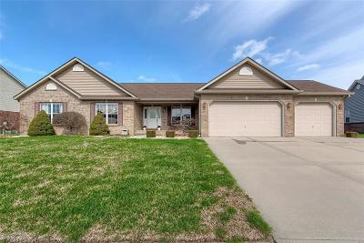 Swansea IL Single Family Home For Sale: $336,900
