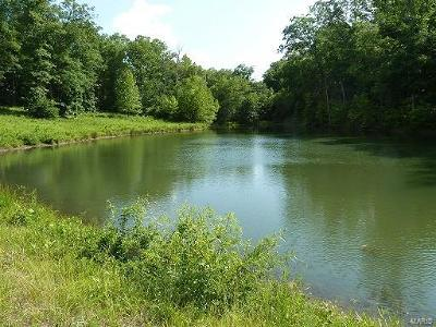 Unincorporated MO Farm For Sale: $95,000